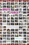 Brute Force : Cracking the Data Encryption Standard, Curtin, Matt, 0387201092