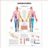 Dermatomes, Anatomical Chart Company Staff, 1587791129