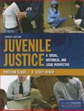 Juvenile Justice: a Social, Historical, and Legal Perspective, Preston Elrod and R. Scott Ryder, 1284031128
