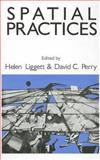 Spatial Practices, , 0803951140