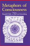 The Metaphors of Consciousness 9780306431197
