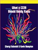 What a CCNA Should Really Know 9781576761205