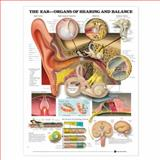 The Ear - Organs of Hearing and Balance, Anatomical Chart Company, 158779120X