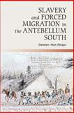 Slavery and Forced Migration in the Antebellum South, Pargas, Damian Alan, 1107031214