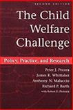 The Child Welfare Challenge 9780202361253