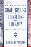 Small Groups in Counseling and Therapy : Process and Leadership, Posthuma, Barbara W., 0205291260