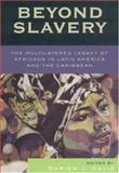 Beyond Slavery : The Multilayered Legacy of Africans in Latin America and the Caribbean, Davis, Darien J., 0742541312