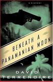 Beneath a Panamanian Moon, David Terrenoire, 0312321317