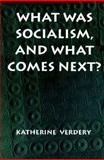 What Was Socialism, and What Comes Next?, Verdery, Katherine, 069101132X
