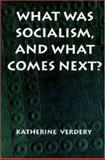 What Was Socialism, and What Comes Next? : Princeton Studies in Culture - Power - History, Verdery, Katherine, 0691011338