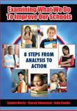 Examining What We Do to Improve Our Schools : 8 Steps from Analysis to Action, Harris, Sandra and Edmonson, Stacey, 1596671351