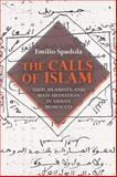 The Calls of Islam : Sufis, Islamists, and Mass Mediation in Urban Morocco, Spadola, Emilio, 025301137X