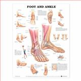 Foot and Ankle Anatomical Chart, Anatomical Chart Company Staff, 1587791374