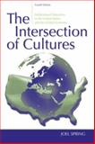 The Intersection of Cultures : Multicultural Education in the United States and the Global Economy, Spring, Joel and Spring, Joel H., 0805861394