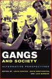 Gangs and Society : Alternative Perspectives, , 0231121407