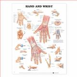 Hand and Wrist Anatomical Chart, Anatomical Chart Company Staff, 1587791420