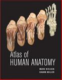Atlas of Human Anatomy, Nielsen, Mark and Miller, Shawn D., 0470501456
