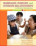 Marriages, Families, and Intimate Relationships : A Practical Introduction, Williams, Brian K. and Sawyer, Stacey C., 0205521452
