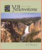 Wild and Beautiful Yellowstone, Fred Pflughoft, 1560371463