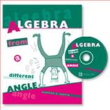 Algebra from A Different Angle, Austin, Suzanne S., 0757501486