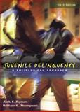 Juvenile Delinquency 9780205401505