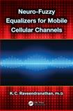 Neuro-Fuzzy Equalizers for Mobile Cellular Channels, K. C. Raveendranathan, 1466581522