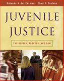Juvenile Justice : The System, Process and Law, Trulson, Chad R. and Del Carmen, Rolando V., 0534521584