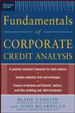 Fundamentals of Corporate Credit Analysis, Ganguin, Blaise and Bilardello, John, 0071441638