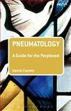 Pneumatology: a Guide for the Perplexed, Castelo, Daniel, 0567461653