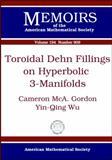 Toroidal Dehn Fillings on Hyperbolic 3-Manifolds, Cameron Mca. Gordon and Ying-Qing Wu, 082184167X