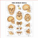 The Human Skull Anatomical Chart, Anatomical Chart Company Staff, 1587791684