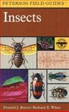 A Field Guide to Insects, Mariner Books Staff, 0395911702