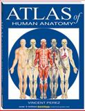 Atlas of Human Anatomy 1st Edition