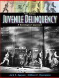 Juvenile Delinquency 9780205321773