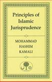 Principles of Islamic Jurisprudence 9780946621828