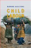 Child Labour : Burning Questions, Lieten, Kristoffel, 9052601852