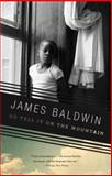 Go Tell It on the Mountain, James Baldwin, 0375701877