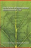 The Future of International Environmental Law, United Nations University Staff, 9280811924