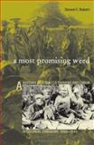 A Most Promising Weed : A History of Tobacco Farming and Labor in Colonial Zimbabwe, 1890-1945, Rubert, Steven C., 0896802035