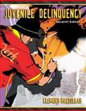 Juvenile Delinquency 7th Edition
