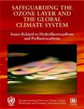 Safeguarding the Ozone Layer and the Global Climate System : Special Report of the Intergovernmental Panel on Climate Change, , 0521682061
