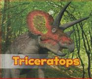 Triceratops, Daniel Nunn, 1484602064