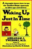 Waking up Just in Time, Abraham J. Twerski, 0312132077