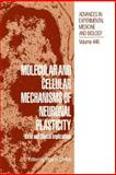 Molecular and Cellular Mechanisms of Neuronal Plasticity : Basic and Clinical Implications, Ehrlich, Yigal H., 1461372097