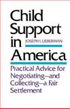 Child Support in America : Practical Advice for Negotiating and Collecting a Fair Settlement, Lieberman, Joseph I., 0300042108