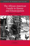 The African-American Family in Slavery and Emancipation, Dunaway, Wilma A., 0521012163