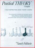 Practical Theory, Sandy Feldstein, 0882842188