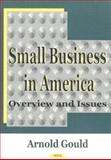 Small Business in America : Overview and Issues, , 1590332202