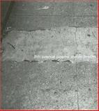 8th Avenue, Stefan Brecht, 193313223X