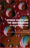 Between Europe and the Mediterranean : Challenges and Fears, Fabre, Thierry, 0230002242